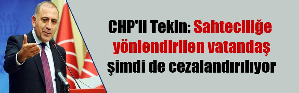 CHP'li Tekin: Sahteciliğe yönlendirilen vatandaş şimdi de cezalandırılıyor