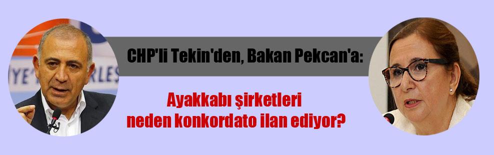 CHP'li Tekin'den, Bakan Pekcan'a: Ayakkabı şirketleri neden konkordato ilan ediyor?