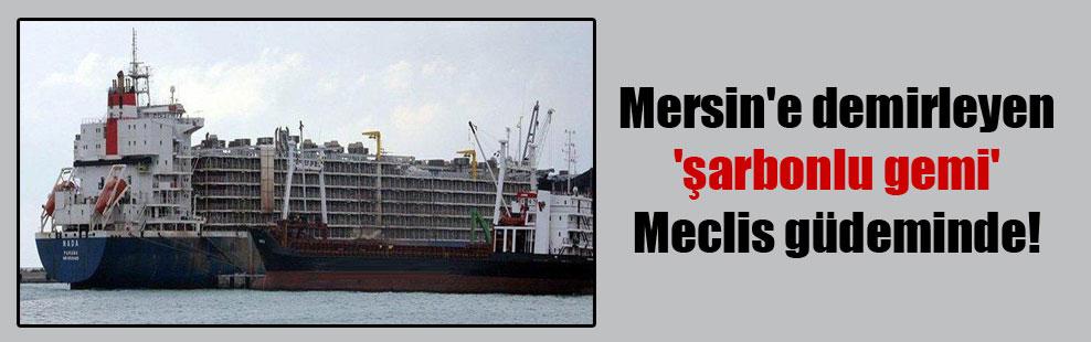 Mersin'e demirleyen 'şarbonlu gemi' Meclis güdeminde!