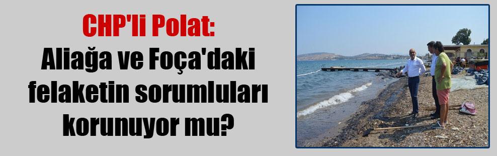 CHP'li Polat: Aliağa ve Foça'daki felaketin sorumluları korunuyor mu?