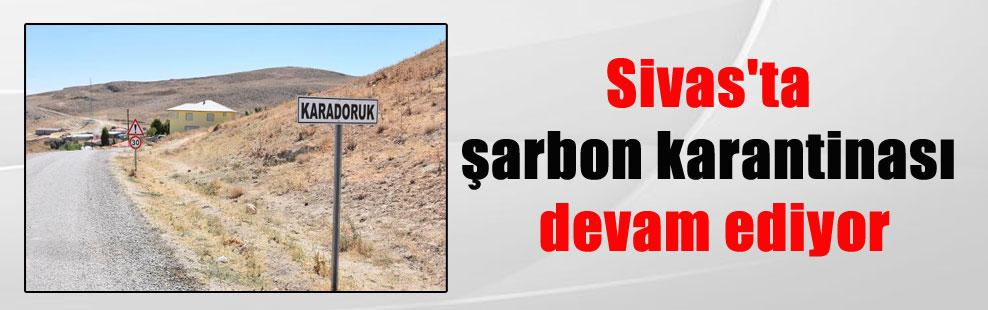 Sivas'ta şarbon karantinası devam ediyor
