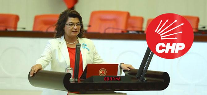 CHP'li Şahin, atanmayan ziraat mühendislerini Meclis'e taşıdı!