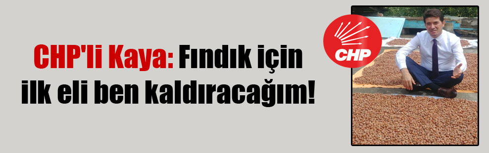 CHP'li Kaya: Fındık için ilk eli ben kaldıracağım!