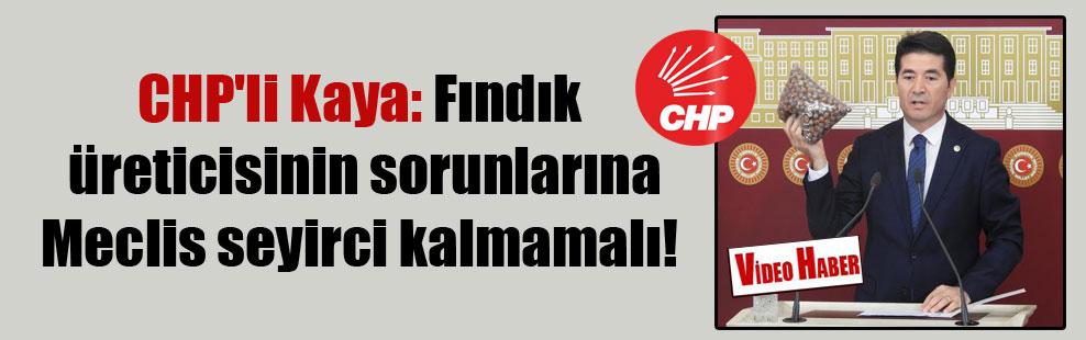 CHP'li Kaya: Fındık üreticisinin sorunlarına Meclis seyirci kalmamalı!