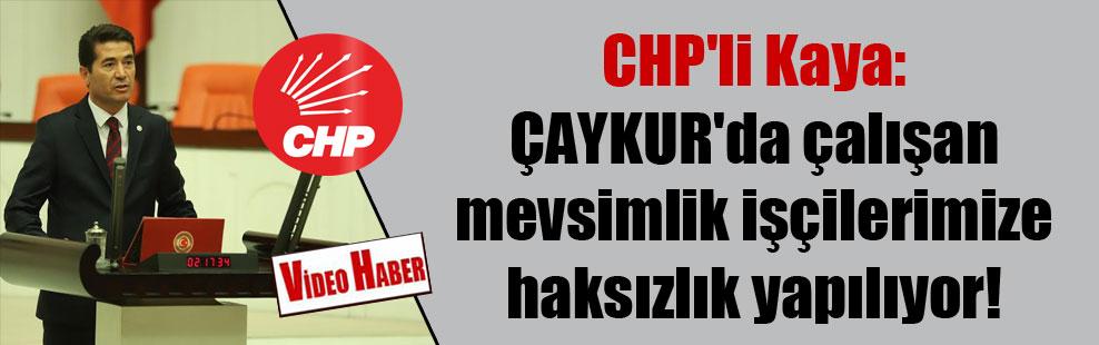 CHP'li Kaya: ÇAYKUR'da çalışan mevsimlik işçilerimize haksızlık yapılıyor!