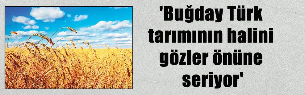 'Buğday Türk tarımının halini gözler önüne seriyor'