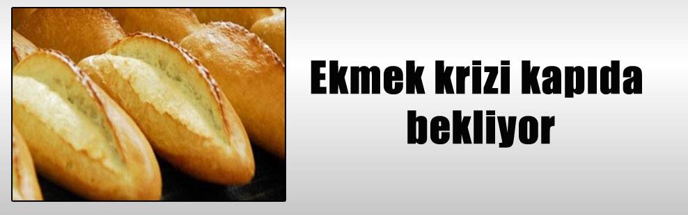 Ekmek krizi kapıda bekliyor
