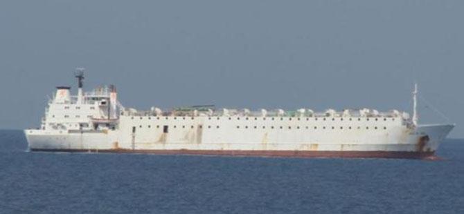 İzmir'de 5 bin 391 tane sığır taşıyan geminin bekleyişi sürüyor