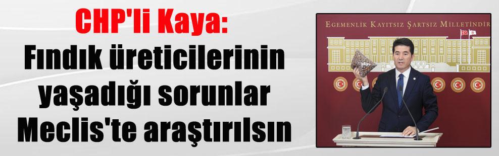 CHP'li Kaya: Fındık üreticilerinin yaşadığı sorunlar Meclis'te araştırılsın