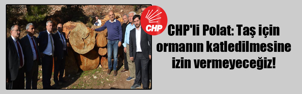 CHP'li Polat: Taş için ormanın katledilmesine izin vermeyeceğiz!