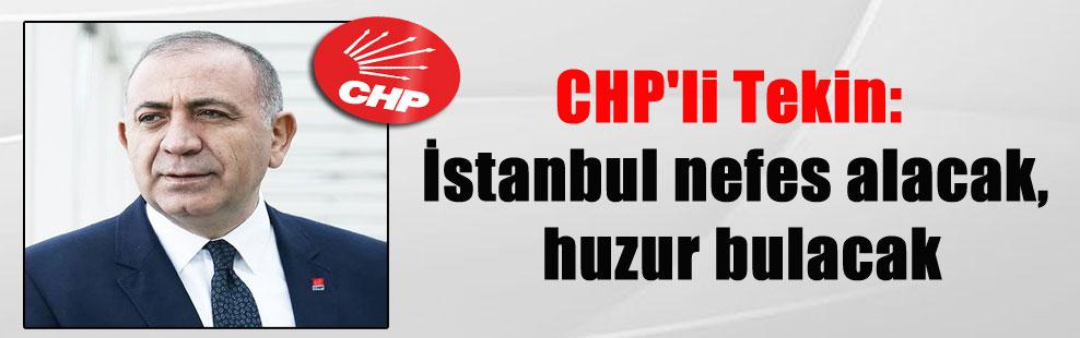 CHP'li Tekin: İstanbul nefes alacak, huzur bulacak