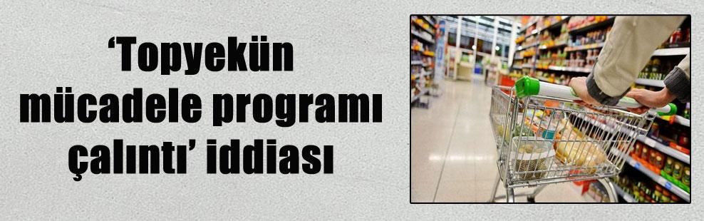 'Topyekün mücadele programı çalıntı' iddiası