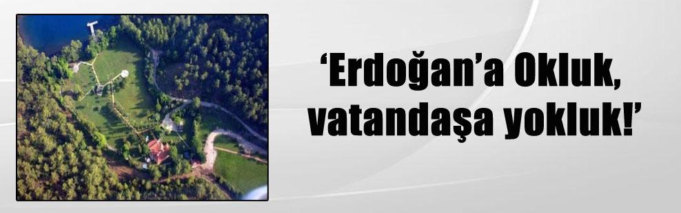 'Erdoğan'a Okluk, vatandaşa yokluk!'