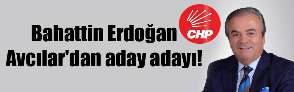 Bahattin Erdoğan Avcılar'dan aday adayı!