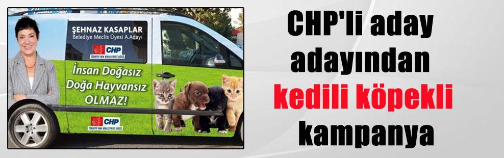 CHP'li aday adayından kedili köpekli kampanya