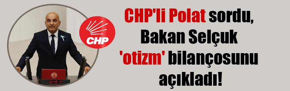 CHP'li Polat sordu, Bakan Selçuk 'otizm' bilançosunu açıkladı!