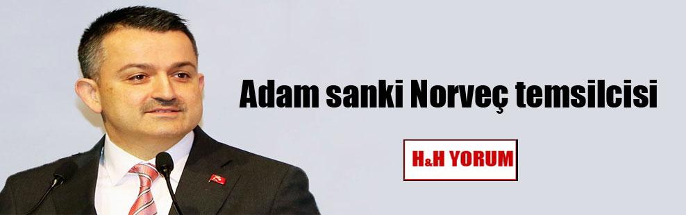 Adam sanki Norveç temsilcisi