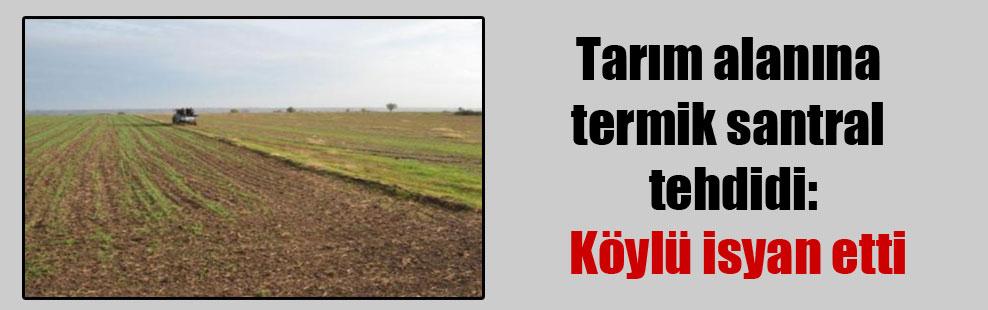 Tarım alanına termik santral tehdidi: Köylü isyan etti