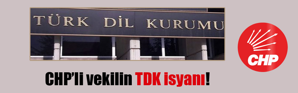 CHP'li vekilin TDK isyanı!