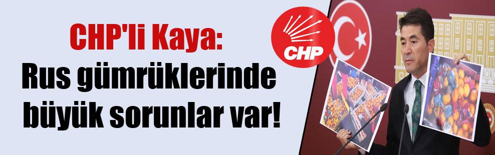 CHP'li Kaya: Rus gümrüklerinde büyük sorunlar var!
