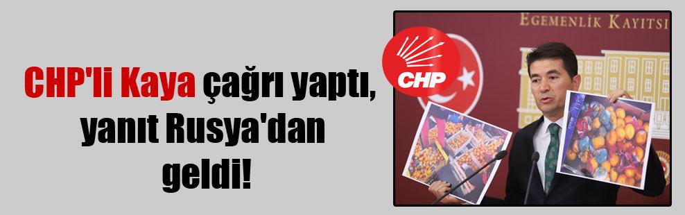CHP'li Kaya çağrı yaptı, yanıt Rusya'dan geldi!