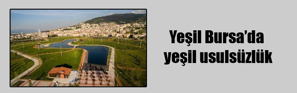 Yeşil Bursa'da yeşil usulsüzlük