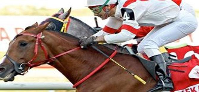 Jokeylerden tarihi karar: Karataş ve arkadaşları at binmeyecek