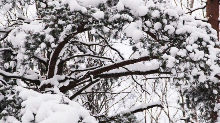 3 ilde yüz yüze eğitime kar engeli