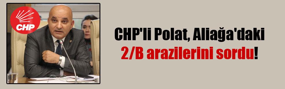 CHP'li Polat, Aliağa'daki 2/B arazilerini sordu!