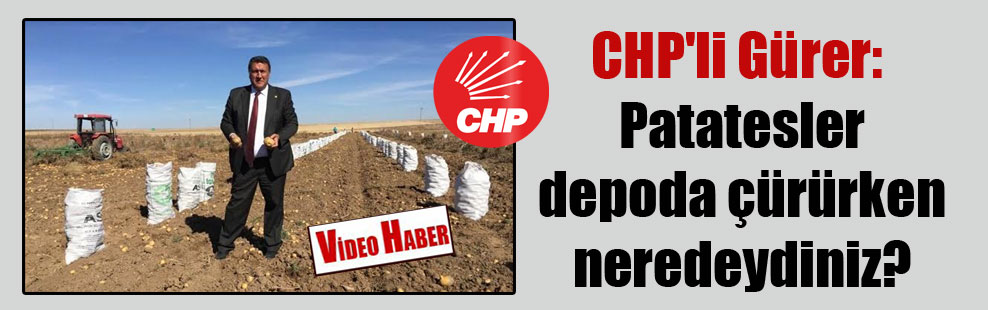 CHP'li Gürer: Patatesler depoda çürürken neredeydiniz?