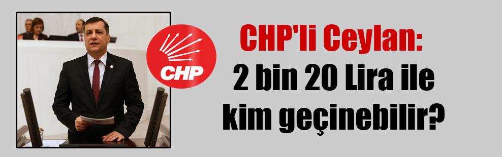 CHP'li Ceylan: 2 bin 20 Lira ile kim geçinebilir?
