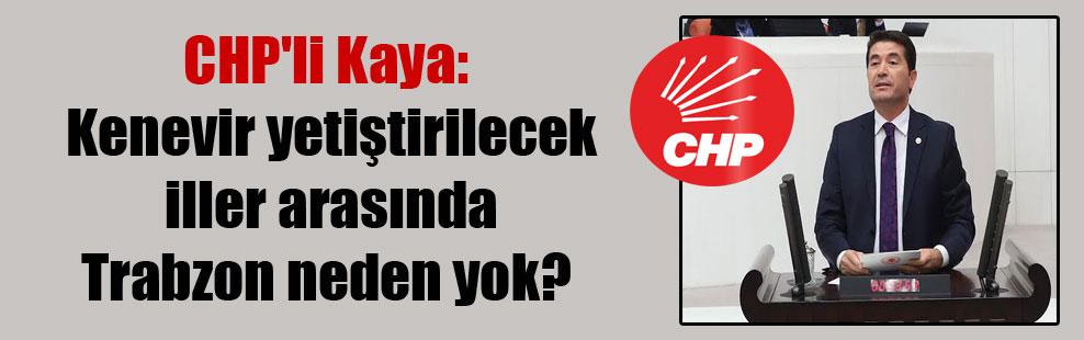 CHP'li Kaya: Kenevir yetiştirilecek iller arasında Trabzon neden yok?