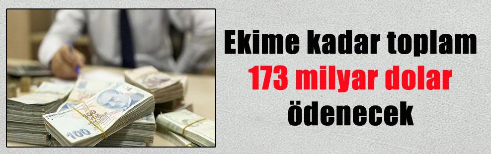 Ekime kadar toplam 173 milyar dolar ödenecek