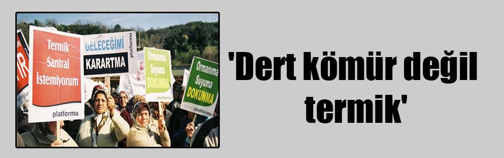 'Dert kömür değil termik'