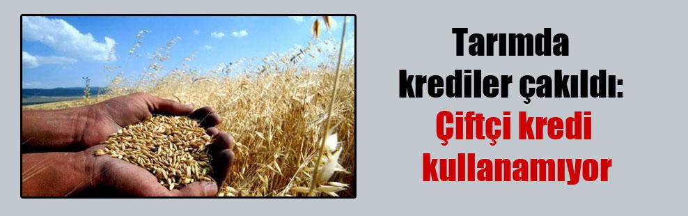 Tarımda krediler çakıldı: Çiftçi kredi kullanamıyor