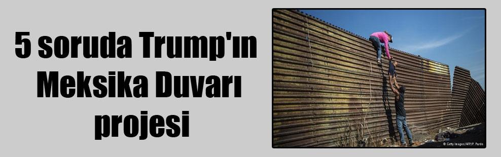 5 soruda Trump'ın Meksika Duvarı projesi