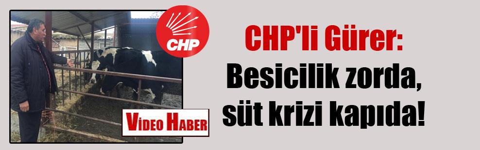 CHP'li Gürer: Besicilik zorda, süt krizi kapıda!