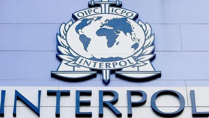 Türkiye'den Almanya'ya bin 252 Interpol kararı