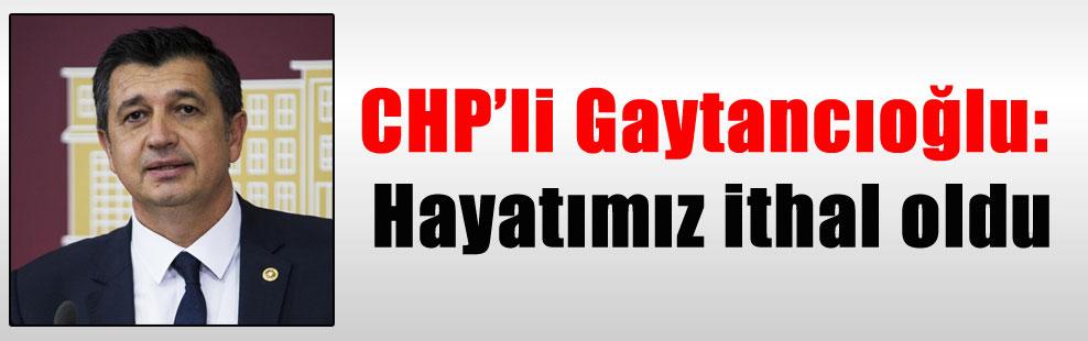 CHP'li Gaytancıoğlu: Hayatımız ithal oldu