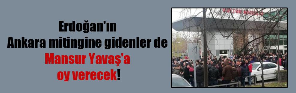 Erdoğan'ın Ankara mitingine gidenler de Mansur Yavaş'a oy verecek!