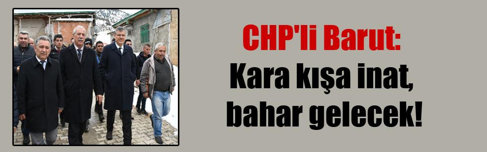 CHP'li Barut: Kara kışa inat, bahar gelecek!