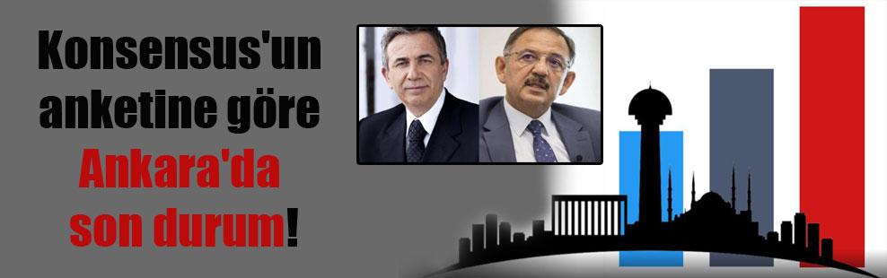 Konsensus'un anketine göre Ankara'da son durum!