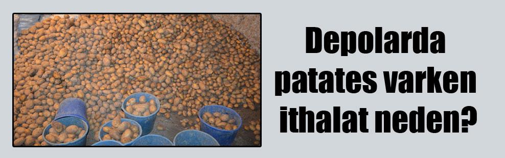 Depolarda patates varken ithalat neden?