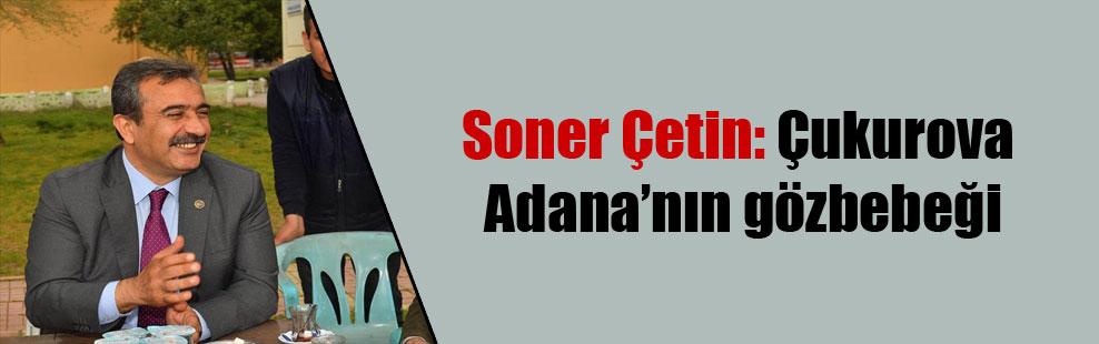 Soner Çetin: Çukurova Adana'nın gözbebeği