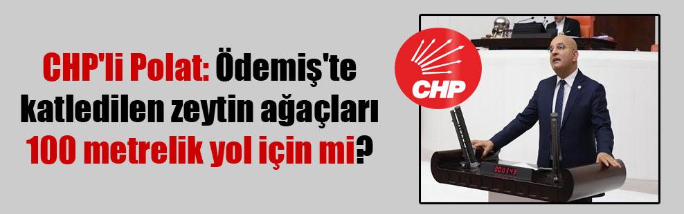 CHP'li Polat: Ödemiş'te katledilen zeytin ağaçları 100 metrelik yol için mi?