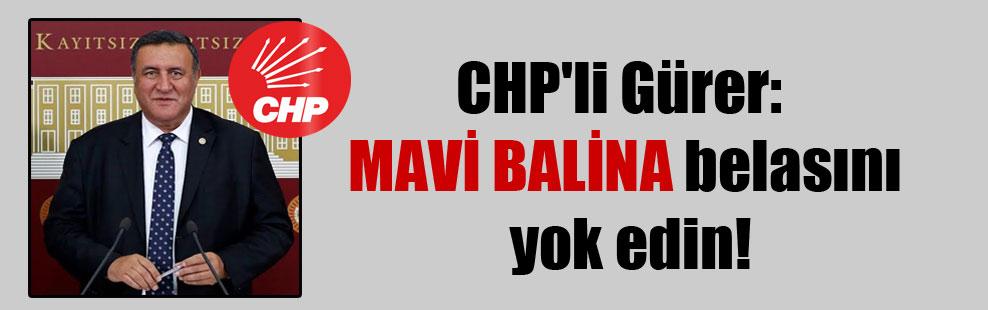 CHP'li Gürer: MAVİ BALİNA belasını yok edin!