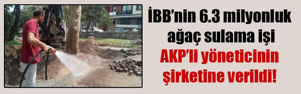 İBB'nin 6.3 milyonluk ağaç sulama işi AKP'li yöneticinin şirketine verildi!