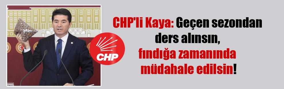 CHP'li Kaya: Geçen sezondan ders alınsın, fındığa zamanında müdahale edilsin!