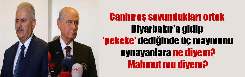 Canhıraş savundukları ortak Diyarbakır'a gidip 'pekeke' dediğinde üç maymunu oynayanlara ne diyem? Mahmut mu diyem?