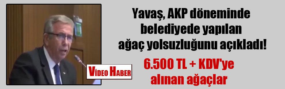 Yavaş, AKP döneminde belediyede yapılan ağaç yolsuzluğunu açıkladı!
